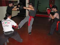 Chow Gar Training - Pad Work